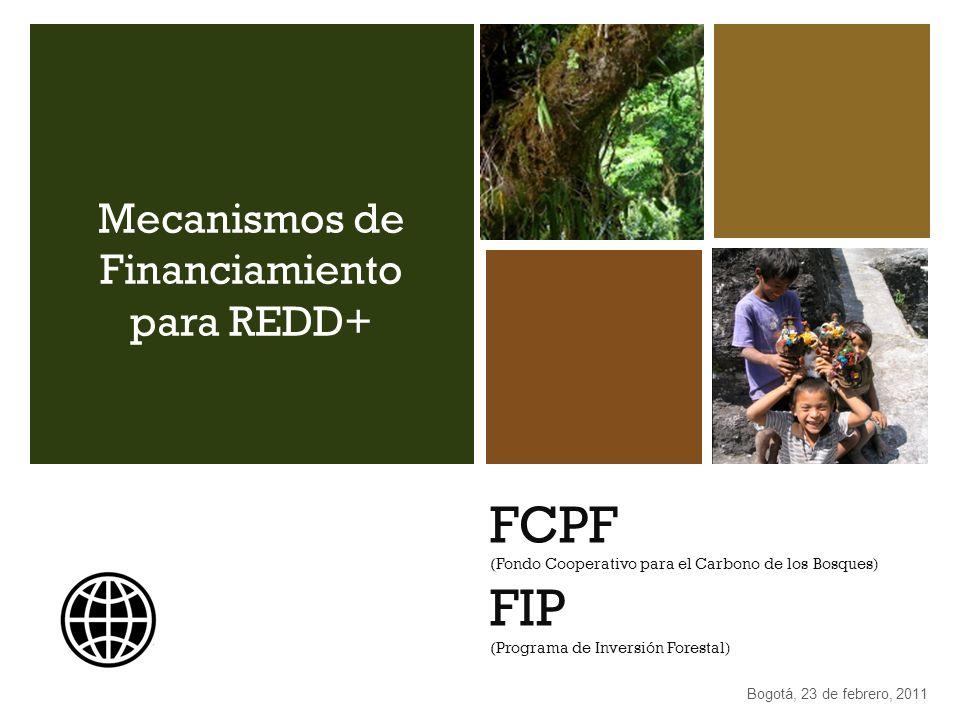 FCPF (Fondo Cooperativo para el Carbono de los Bosques) FIP (Programa de Inversión Forestal) Mecanismos de Financiamiento para REDD+ Bogotá, 23 de feb
