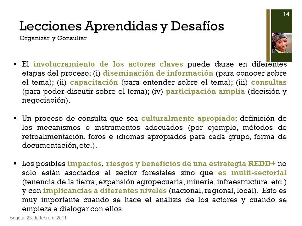 14 Bogotá, 23 de febrero, 2011 Lecciones Aprendidas y Desafíos Organizar y Consultar El involucramiento de los actores claves puede darse en diferente