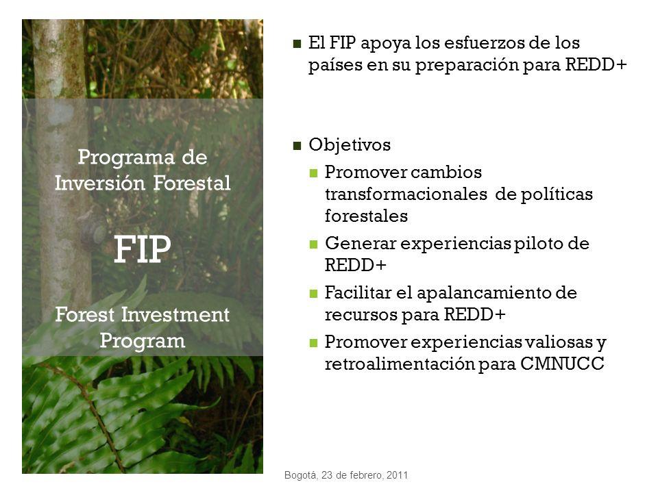 Programa de Inversión Forestal FIP Forest Investment Program El FIP apoya los esfuerzos de los países en su preparación para REDD+ Objetivos Promover
