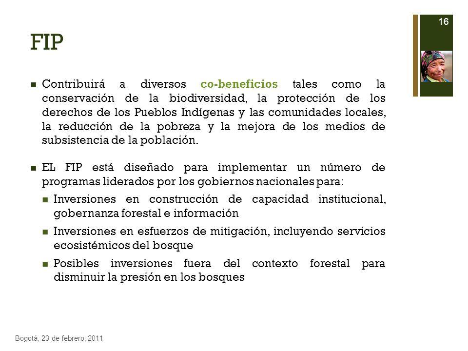 FIP Contribuirá a diversos co-beneficios tales como la conservación de la biodiversidad, la protección de los derechos de los Pueblos Indígenas y las