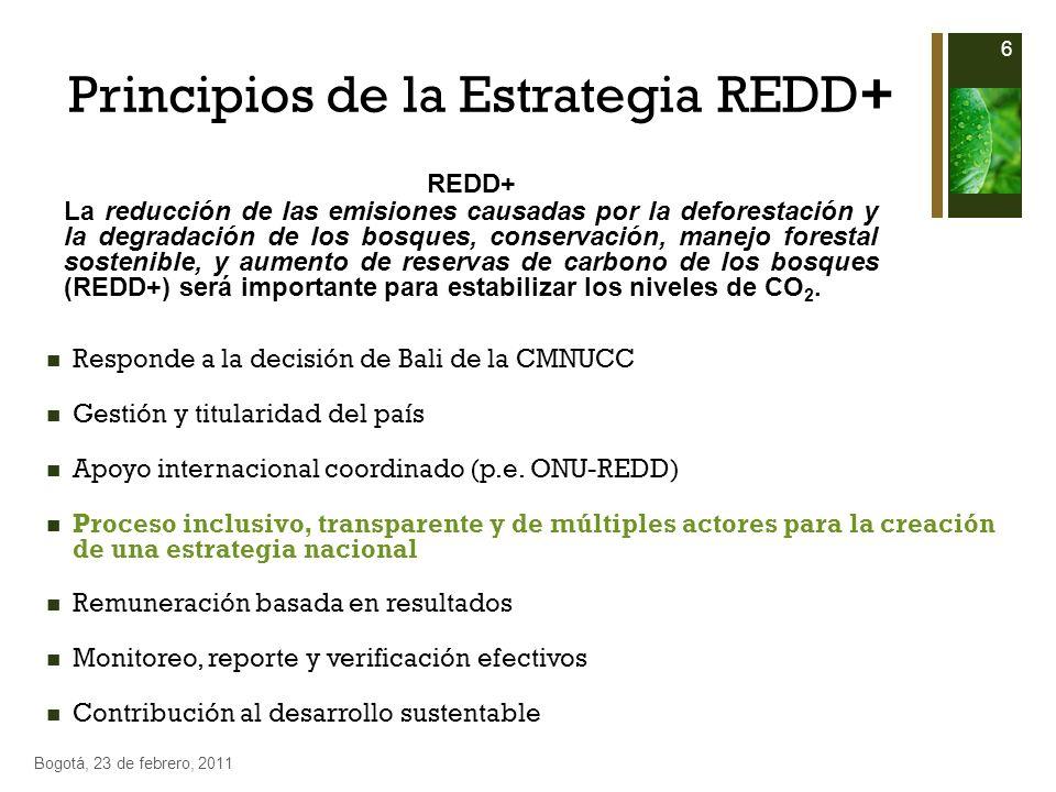 Principios de la Estrategia REDD+ Responde a la decisión de Bali de la CMNUCC Gestión y titularidad del país Apoyo internacional coordinado (p.e. ONU-