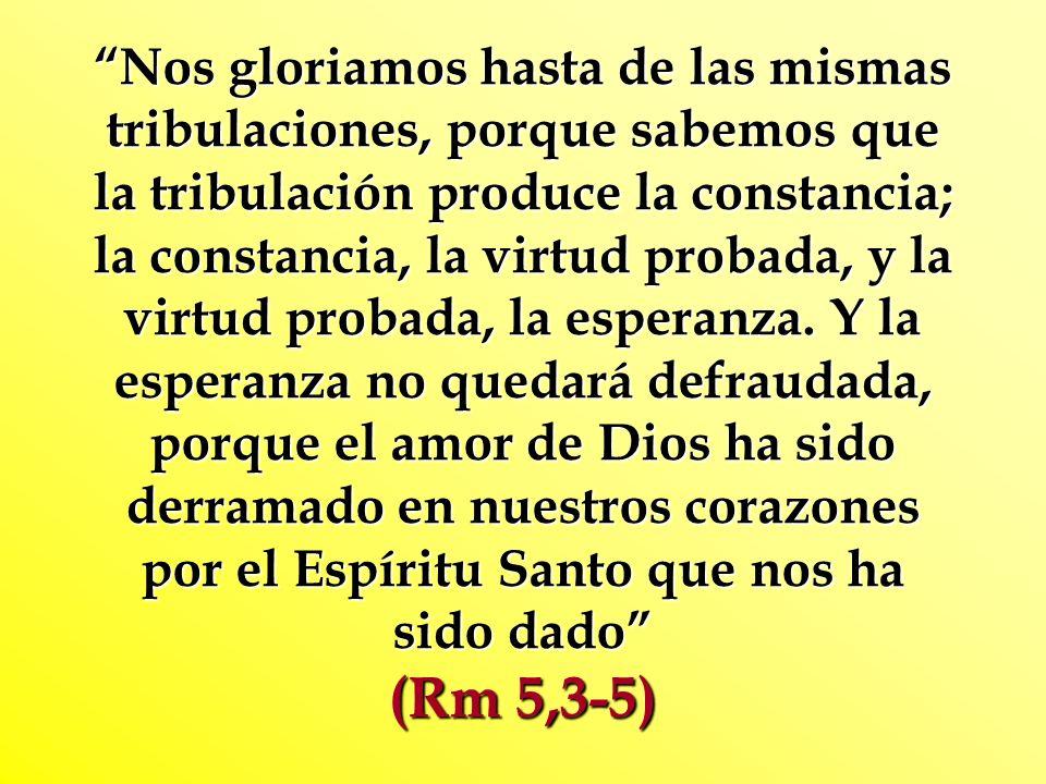 Nos gloriamos hasta de las mismas tribulaciones, porque sabemos que la tribulación produce la constancia; la constancia, la virtud probada, y la virtu