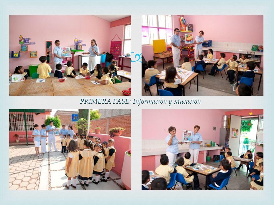 PRIMERA FASE: Información y educación