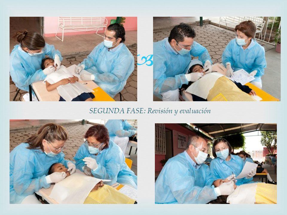 SEGUNDA FASE: Revisión y evaluación