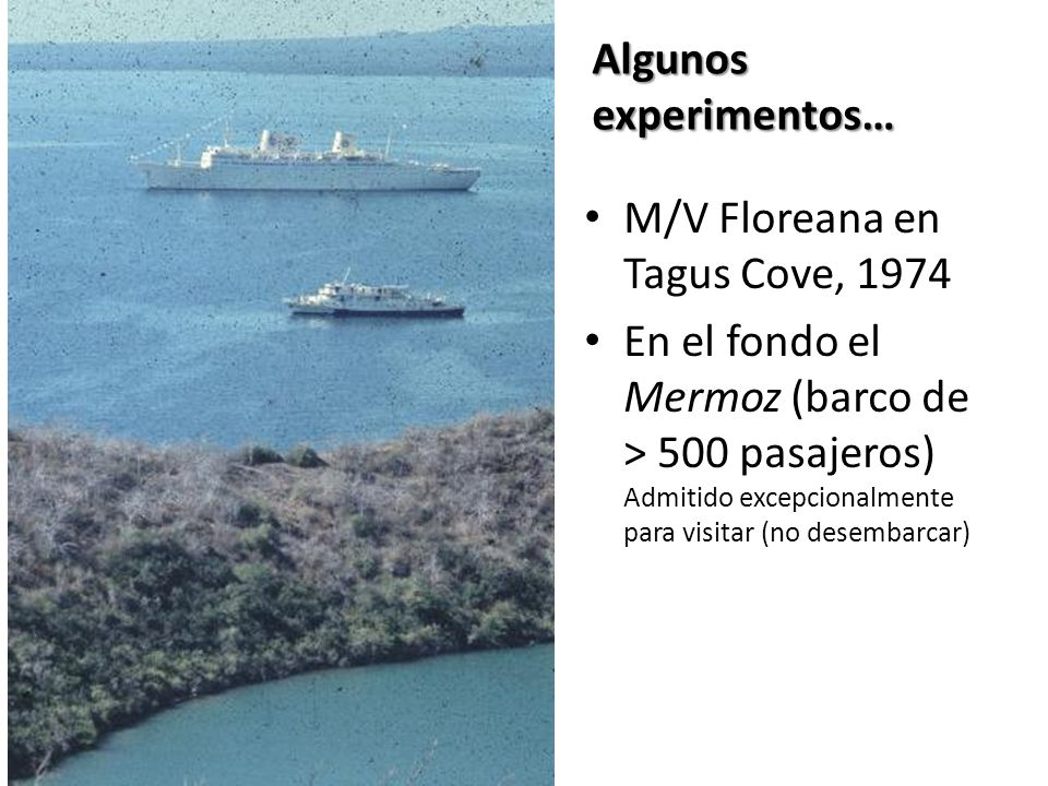 M/V Floreana en Tagus Cove, 1974 En el fondo el Mermoz (barco de > 500 pasajeros) Admitido excepcionalmente para visitar (no desembarcar) Algunos experimentos…