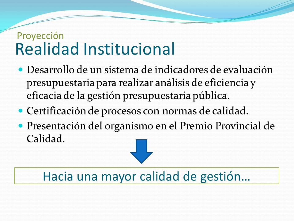 Realidad Institucional Desarrollo de un sistema de indicadores de evaluación presupuestaria para realizar análisis de eficiencia y eficacia de la gestión presupuestaria pública.