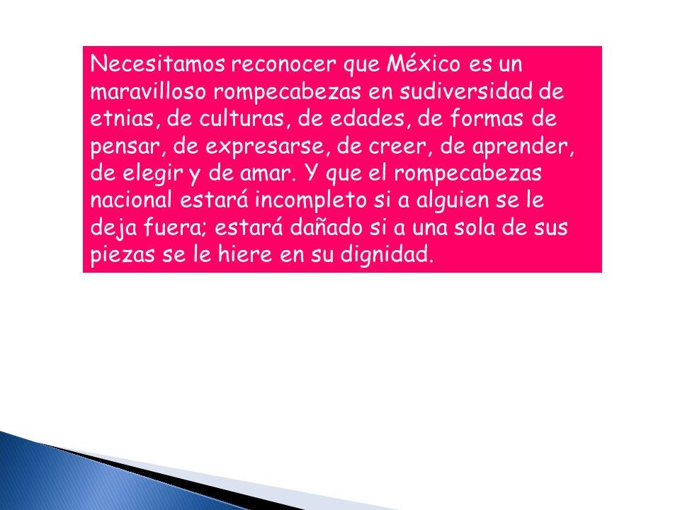 Necesitamos reconocer que México es un maravilloso rompecabezas en sudiversidad de etnias, de culturas, de edades, de formas de pensar, de expresarse,