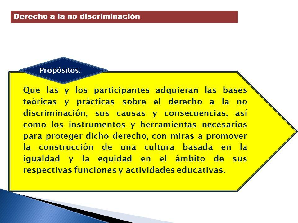 Que las y los participantes adquieran las bases teóricas y prácticas sobre el derecho a la no discriminación, sus causas y consecuencias, así como los
