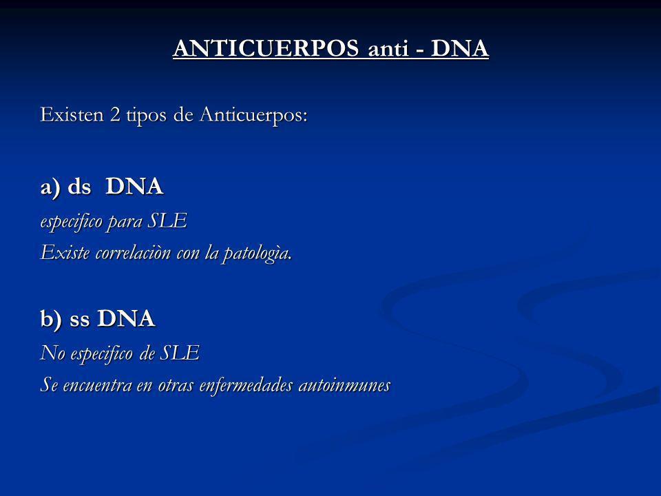 ANTICUERPOS anti - DNA Existen 2 tipos de Anticuerpos: a) ds DNA especifico para SLE Existe correlaciòn con la patologìa.
