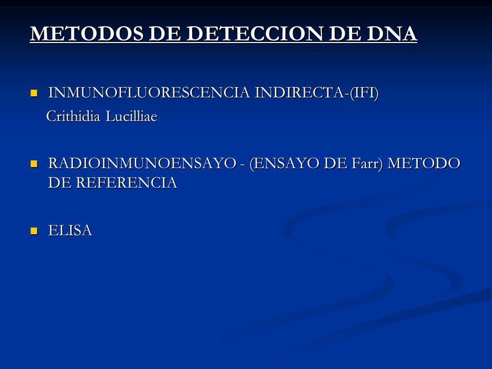 METODOS DE DETECCION DE DNA INMUNOFLUORESCENCIA INDIRECTA-(IFI) INMUNOFLUORESCENCIA INDIRECTA-(IFI) Crithidia Lucilliae Crithidia Lucilliae RADIOINMUNOENSAYO - (ENSAYO DE Farr) METODO DE REFERENCIA RADIOINMUNOENSAYO - (ENSAYO DE Farr) METODO DE REFERENCIA ELISA ELISA