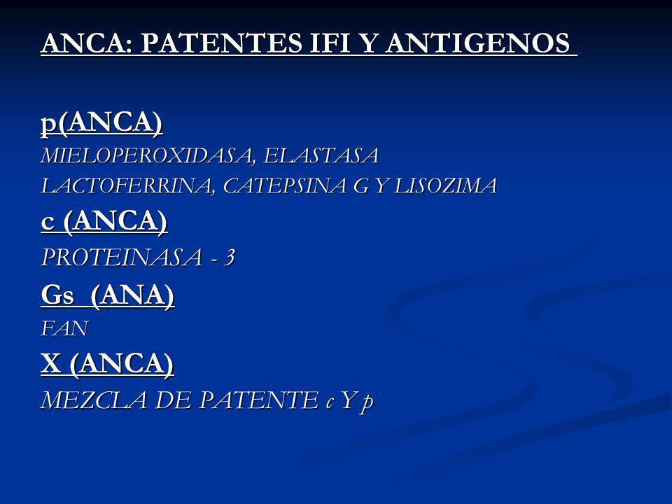 ANCA: PATENTES IFI Y ANTIGENOS ANCA: PATENTES IFI Y ANTIGENOS p(ANCA) MIELOPEROXIDASA, ELASTASA LACTOFERRINA, CATEPSINA G Y LISOZIMA LACTOFERRINA, CATEPSINA G Y LISOZIMA c (ANCA) PROTEINASA - 3 Gs (ANA) FAN X (ANCA) MEZCLA DE PATENTE c Y p