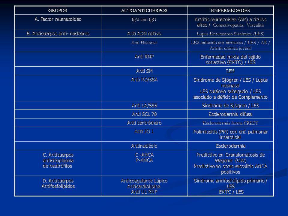GRUPOSAUTOANTICUERPOSENFERMEDADES A. Factor reumatoideo IgM anti IgG IgM anti IgG Artritis reumatoidea (AR) a títulos altos / Conectivopatias. Vasculi