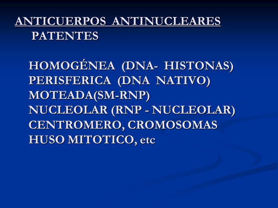 ANTICUERPOS ANTINUCLEARES PATENTES HOMOGÉNEA (DNA- HISTONAS) PERISFERICA (DNA NATIVO) MOTEADA(SM-RNP) NUCLEOLAR (RNP - NUCLEOLAR) CENTROMERO, CROMOSOM