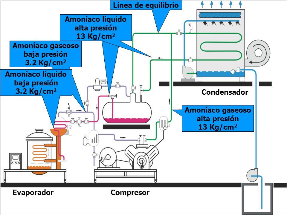 26 EVAPORADOR El amoníaco que aún permanece en su fase líquida tiene la capacidad de refrigerar por que no ha hervido.