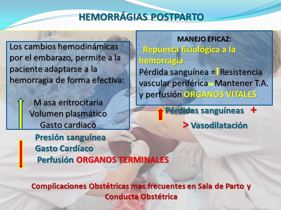 Complicaciones Obstétricas mas frecuentes en Sala de Parto y Conducta Obstétrica HEMORRÁGIAS POSTPARTO Pérdidas sanguíneas + Pérdidas sanguíneas + > Vasodilatación > Vasodilatación Presión sanguínea Presión sanguínea Gasto Cardíaco Gasto Cardíaco Perfusión ORGANOS TERMINALES Perfusión ORGANOS TERMINALES Los cambios hemodinámicas por el embarazo, permite a la paciente adaptarse a la hemorragia de forma efectiva: M asa eritrocitaria Volumen plasmático Gasto cardiaco MANEJO EFICAZ: Repuesta fisiológica a la hemorragia Repuesta fisiológica a la hemorragia Pérdida sanguínea = Resistencia vascular periférica Mantener T.A.