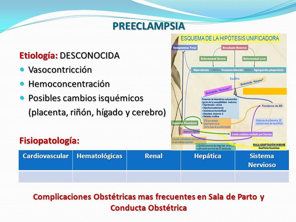 Complicaciones Obstétricas mas frecuentes en Sala de Parto y Conducta Obstétrica PREECLAMPSIA Etiología: DESCONOCIDA Vasocontricción Vasocontricción Hemoconcentración Hemoconcentración Posibles cambios isquémicos Posibles cambios isquémicos (placenta, riñón, hígado y cerebro) (placenta, riñón, hígado y cerebro)Fisiopatología: CardiovascularHematológicasRenalHepática Sistema Nervioso