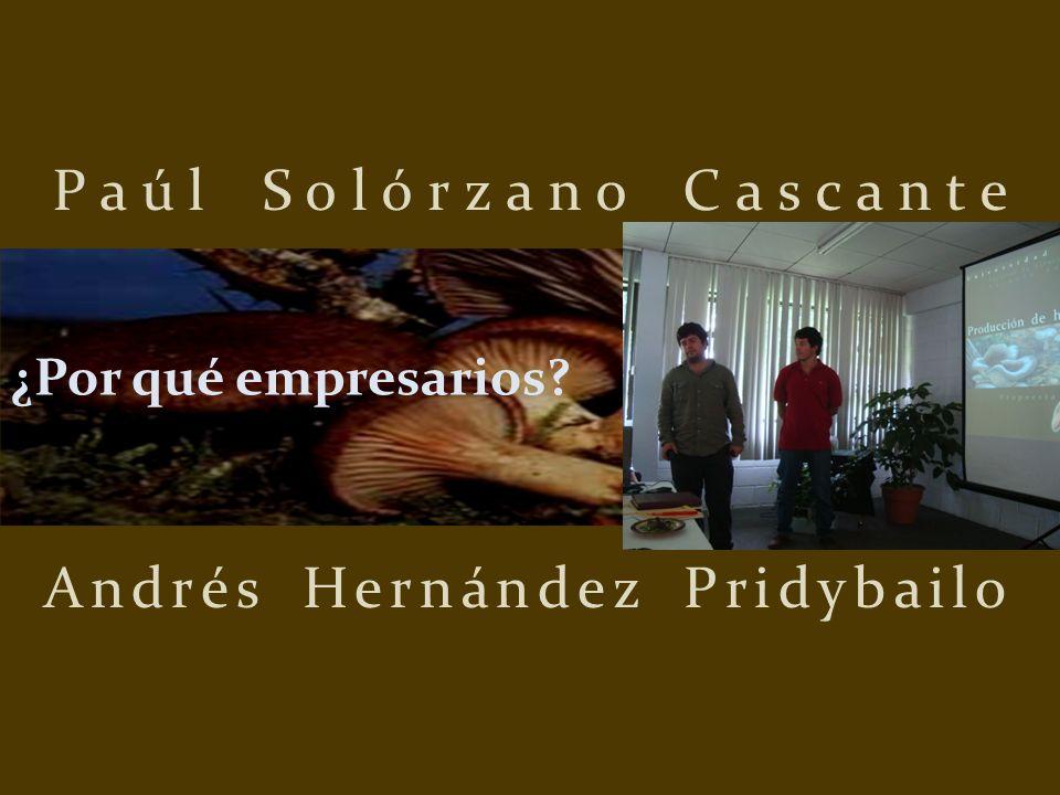 Paúl Solórzano Cascante Andrés Hernández Pridybailo ¿Por qué empresarios?