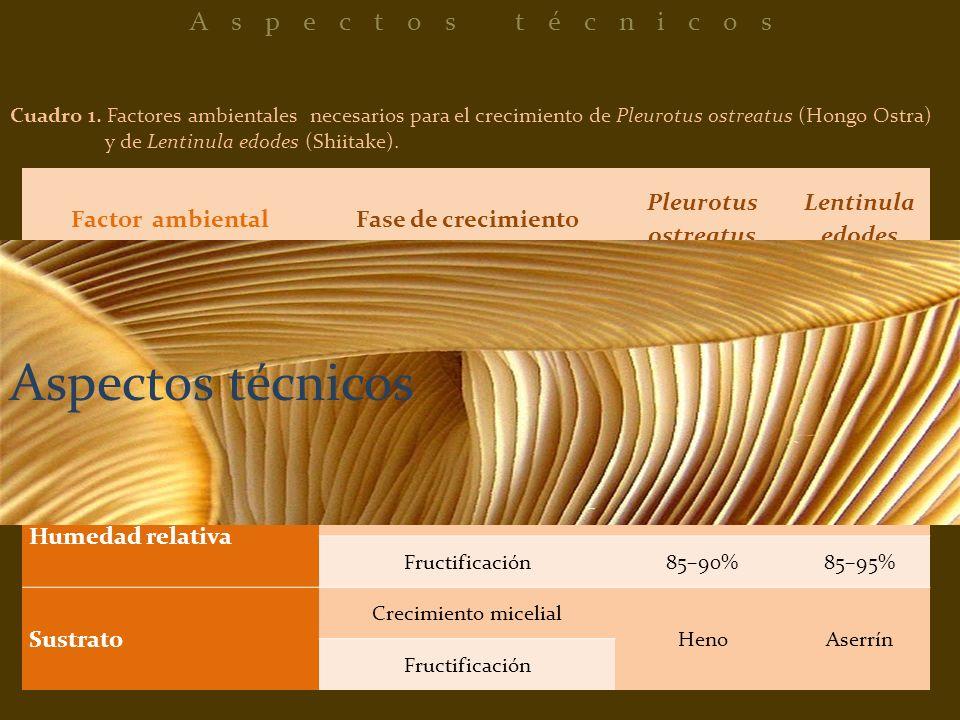 Factor ambientalFase de crecimiento Pleurotus ostreatus Lentinula edodes Temperatura (°C) Crecimiento micelial10–215–32 Fructificación8–335–25 Luminos