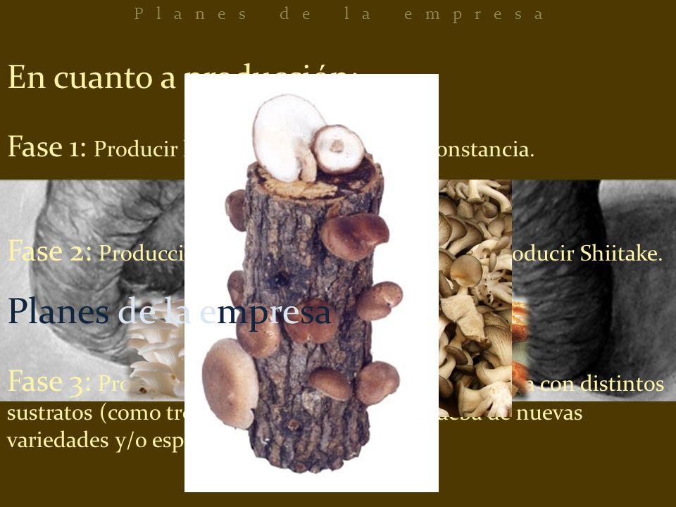 En cuanto a producción: Fase 1: Producir hongos ostra y mantener constancia. Fase 2: Producción de hongos ostra y empezar a producir Shiitake. Fase 3: