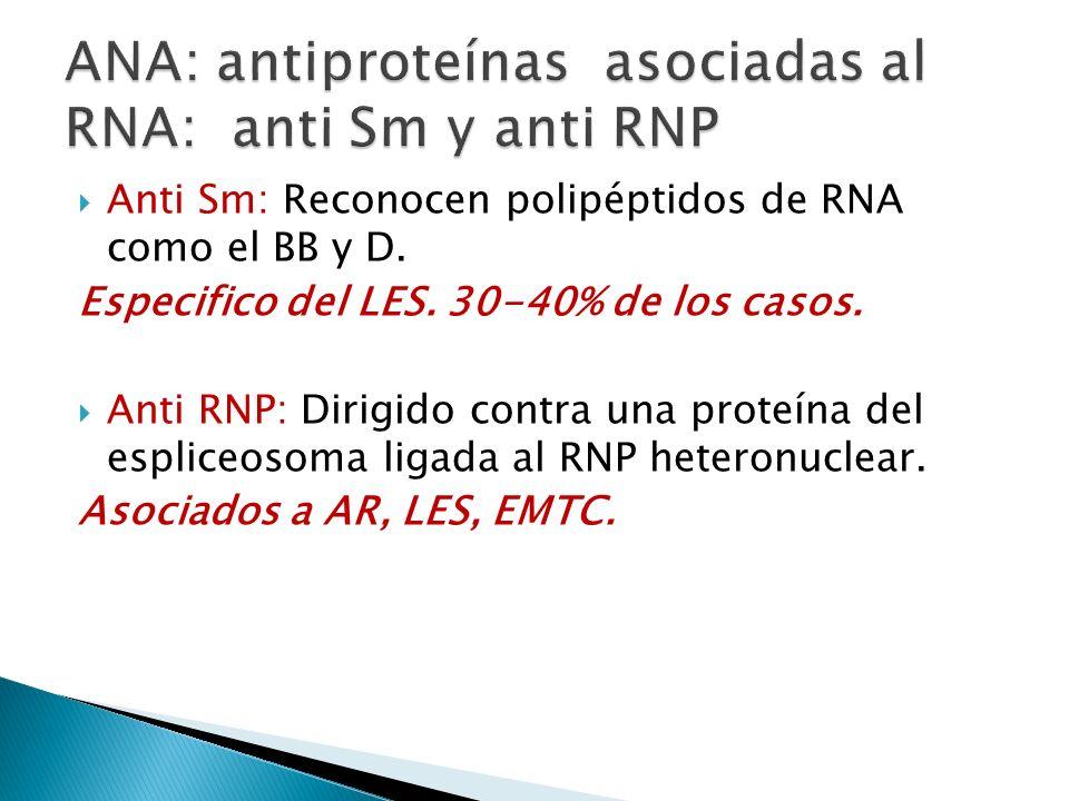 Anti Sm: Reconocen polipéptidos de RNA como el BB y D. Especifico del LES. 30-40% de los casos. Anti RNP: Dirigido contra una proteína del espliceosom