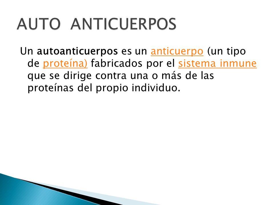 Un autoanticuerpos es un anticuerpo (un tipo de proteína) fabricados por el sistema inmune que se dirige contra una o más de las proteínas del propio