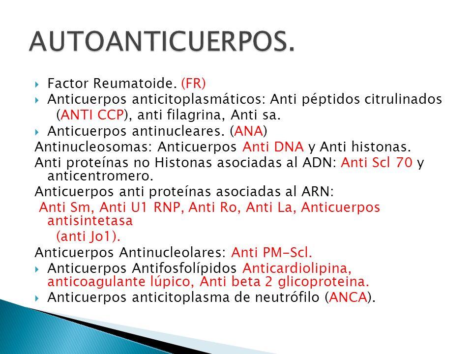Factor Reumatoide. (FR) Anticuerpos anticitoplasmáticos: Anti péptidos citrulinados (ANTI CCP), anti filagrina, Anti sa. Anticuerpos antinucleares. (A