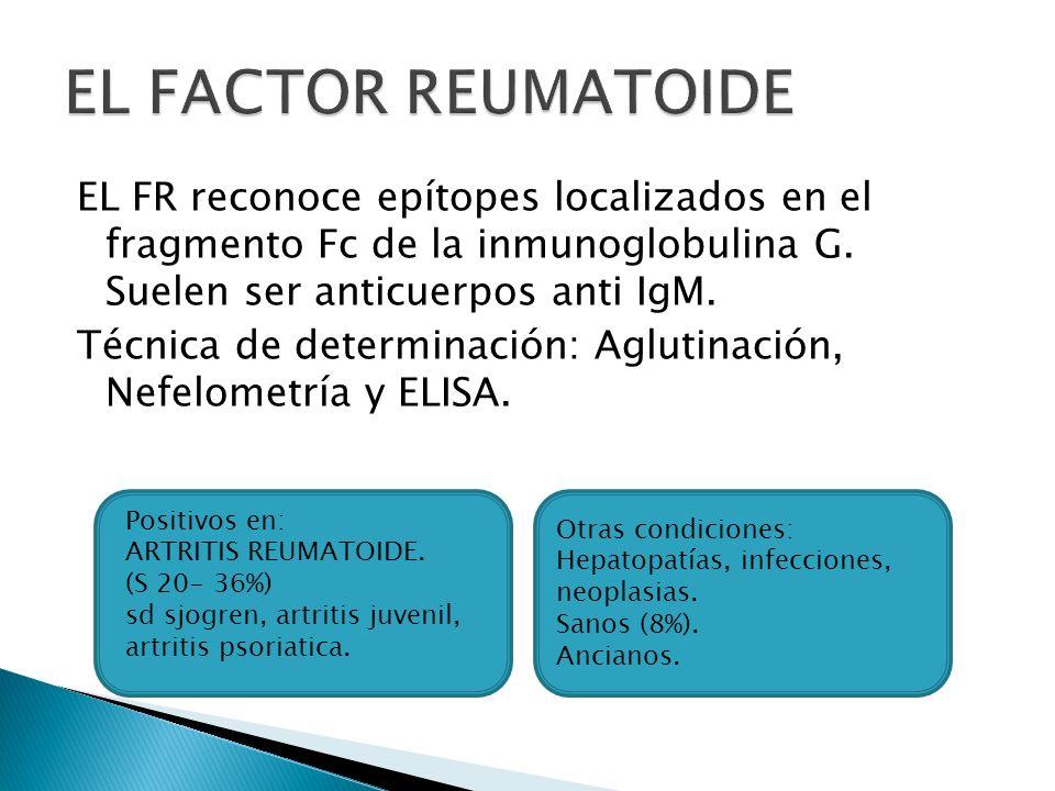 Frecuencia de FR en enfermedades reumáticas y otras Enfermedad Frecuencia aproximada (%) Artritis Reumatoide 80 Síndrome de Sjögren 75 - 90 LES 15 - 35 EMTC 50 - 60 Esclerosis Sistémica 20 PM / DM 5 - 10 Críoglobulinemia mixta 90 Endocarditis bacteriana subaguda (EBSA) 40 Hepatitis infecciosas 25 Tuberculosis 15 Sarcoidosis 10 Artritis Idiopática Juvenil 10 *Frecuencia en adultos sanos: 5-7%; en mayores de 60 años puede llegar a 15%.