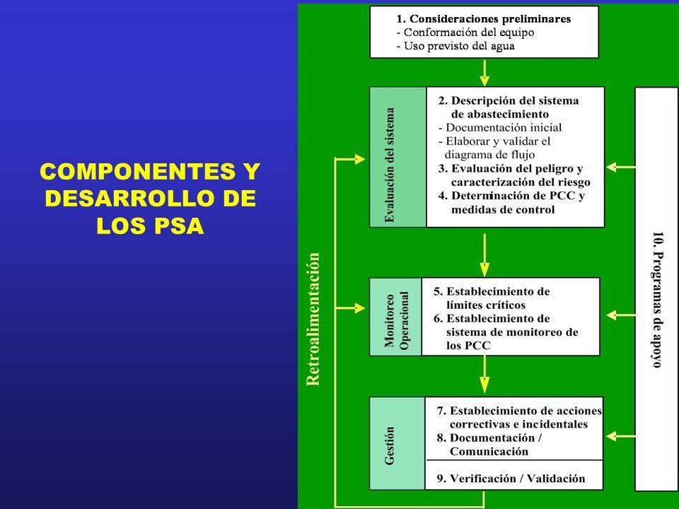 2011 COMPONENTES Y DESARROLLO DE LOS PSA