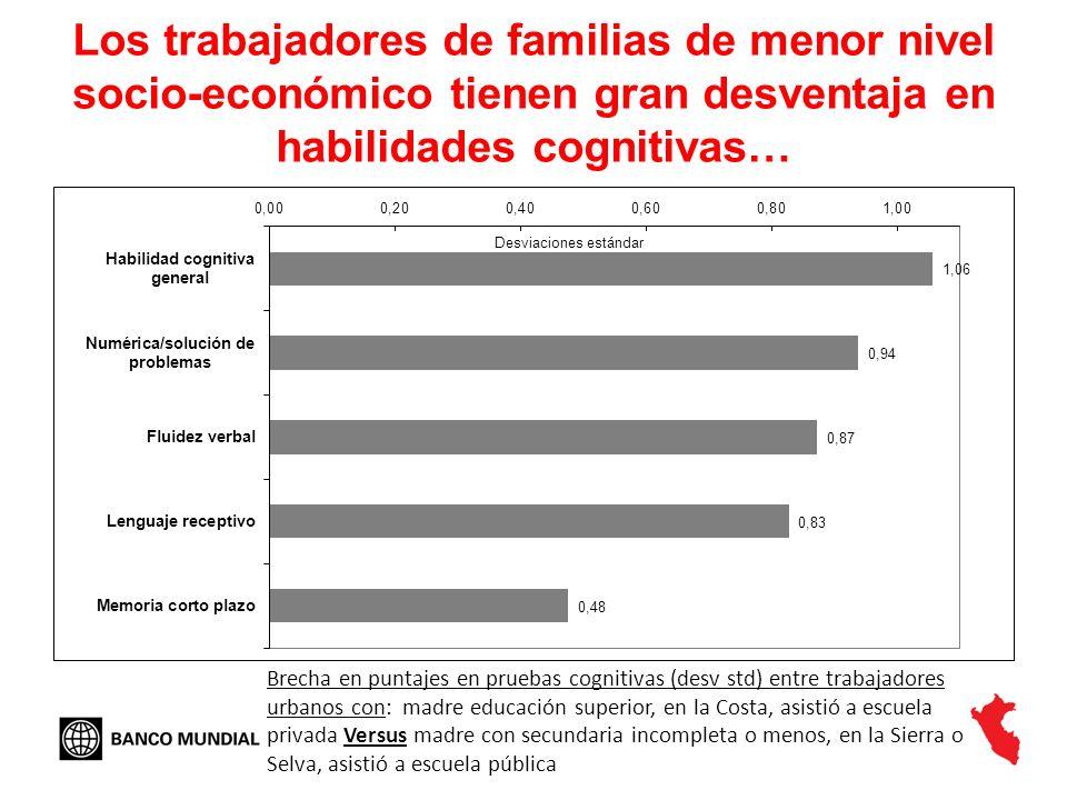 Los trabajadores de familias de menor nivel socio-económico tienen gran desventaja en habilidades cognitivas… Brecha en puntajes en pruebas cognitivas