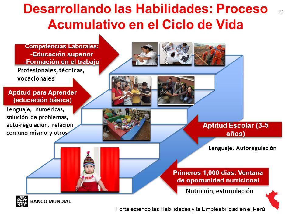25 Desarrollando las Habilidades: Proceso Acumulativo en el Ciclo de Vida Primeros 1,000 días: Ventana de oportunidad nutricional Fortaleciendo las Ha