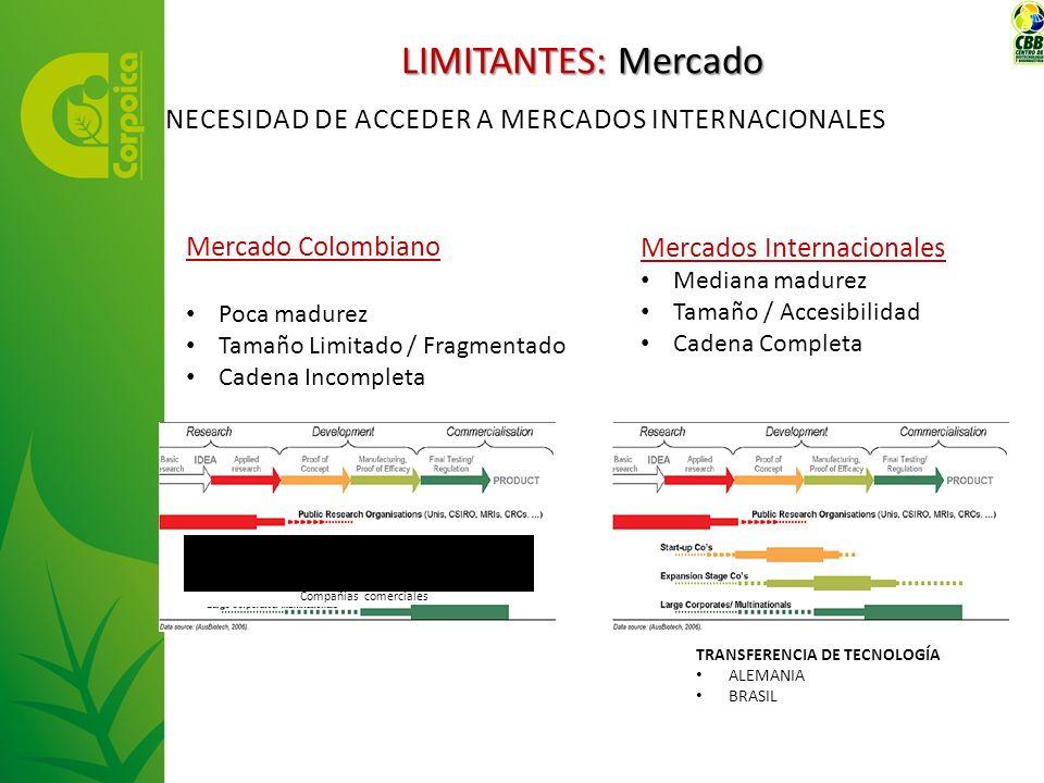 Mercado Colombiano Poca madurez Tamaño Limitado / Fragmentado Cadena Incompleta Compañías comerciales Mercados Internacionales Mediana madurez Tamaño