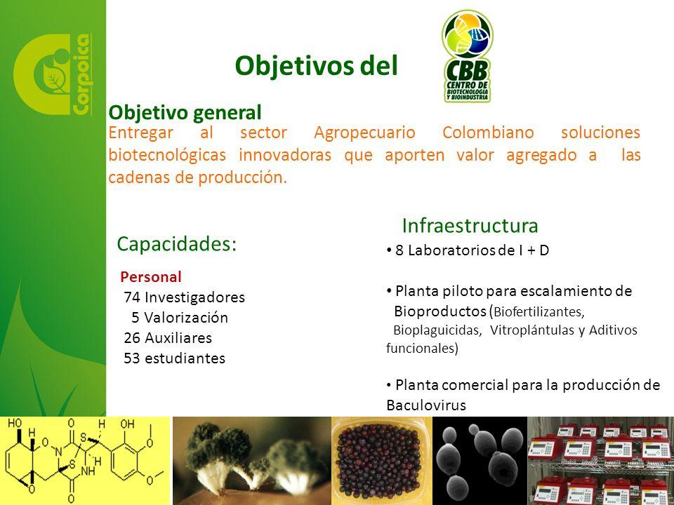 Entregar al sector Agropecuario Colombiano soluciones biotecnológicas innovadoras que aporten valor agregado a las cadenas de producción. Objetivos de