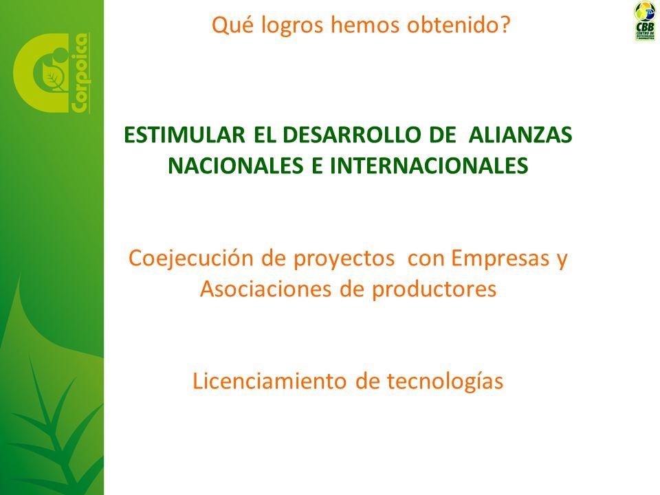 ESTIMULAR EL DESARROLLO DE ALIANZAS NACIONALES E INTERNACIONALES Coejecución de proyectos con Empresas y Asociaciones de productores Licenciamiento de