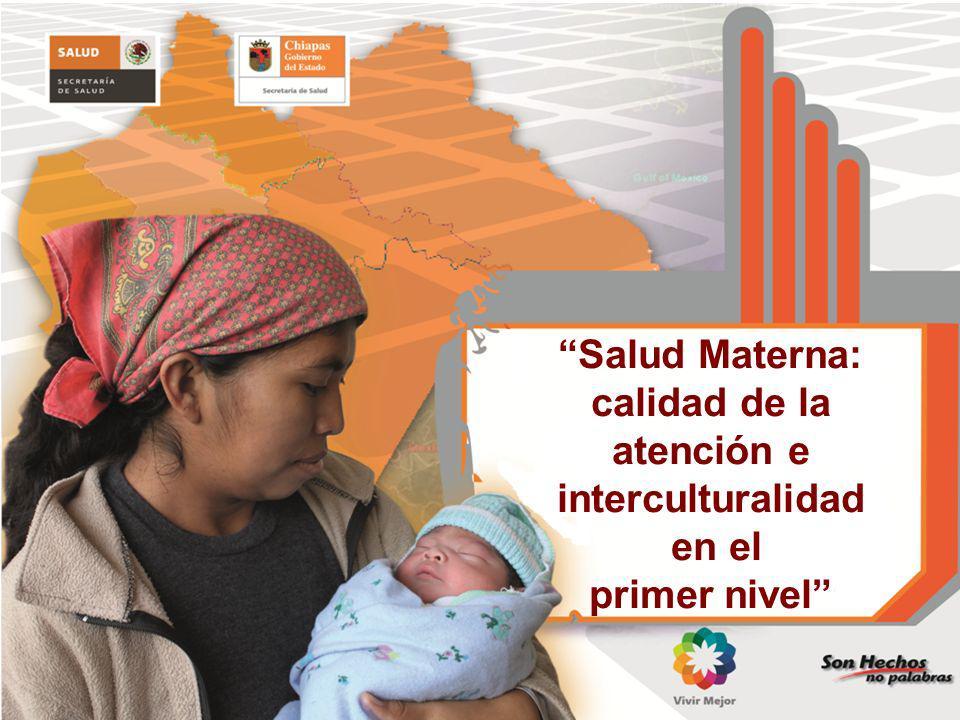 Salud Materna: calidad de la atención e interculturalidad en el primer nivel
