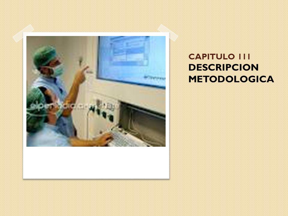 CAPITULO 111 DESCRIPCION METODOLOGICA