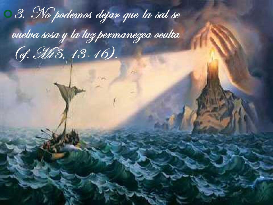 3. No podemos dejar que la sal se vuelva sosa y la luz permanezca oculta (cf. Mt 5, 13-16).