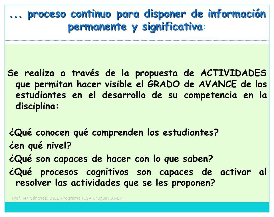 Prof. Mª Sánchez. DIEE-Programa PISA Uruguay.ANEP... proceso continuo para disponer de información permanente y significativa... proceso continuo para