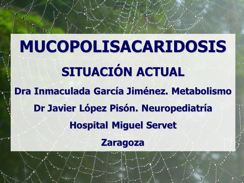 MUCOPOLISACARIDOSIS SITUACIÓN ACTUAL Dra Inmaculada García Jiménez. Metabolismo Dr Javier López Pisón. Neuropediatría Hospital Miguel Servet Zaragoza