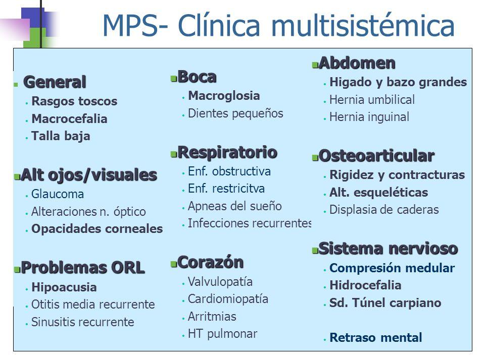 MPS- Clínica multisistémica General Rasgos toscos Macrocefalia Talla baja Alt ojos/visuales Alt ojos/visuales Glaucoma Alteraciones n. óptico Opacidad