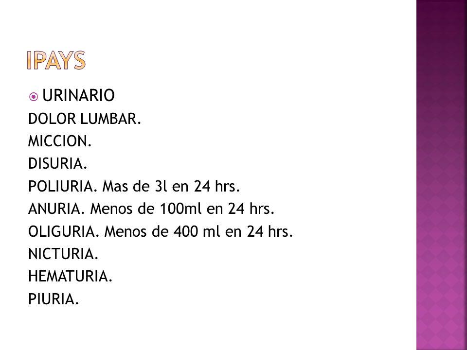 URINARIO DOLOR LUMBAR. MICCION. DISURIA. POLIURIA. Mas de 3l en 24 hrs. ANURIA. Menos de 100ml en 24 hrs. OLIGURIA. Menos de 400 ml en 24 hrs. NICTURI