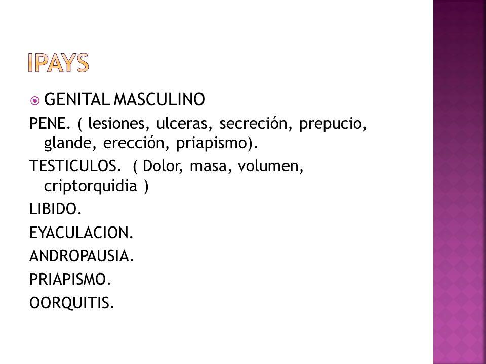 GENITAL MASCULINO PENE. ( lesiones, ulceras, secreción, prepucio, glande, erección, priapismo). TESTICULOS. ( Dolor, masa, volumen, criptorquidia ) LI