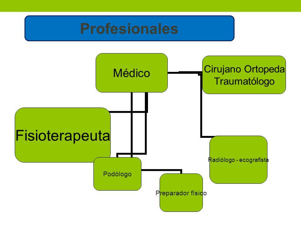 Médico FisioterapeutaPodólogo Preparador físico Radiólogo - ecografista Cirujano Ortopeda Traumatólogo Profesionales