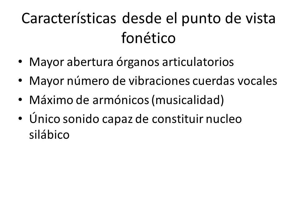 /u/ fonema vocálico alto posterior, tiene como realización los fonos: [u] vocal alta, posterior, labializada, oral.