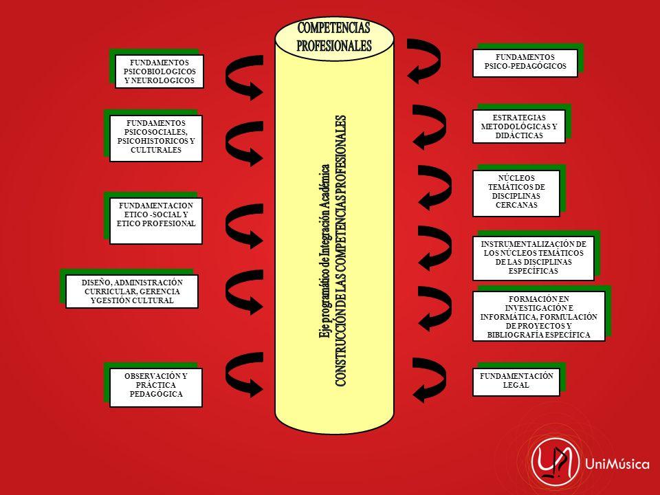 FUNDAMENTOS PSICOBIOLOGICOS Y NEUROLOGICOS FUNDAMENTOS PSICOSOCIALES, PSICOHISTORICOS Y CULTURALES FUNDAMENTACION ETICO -SOCIAL Y ETICO PROFESIONAL DI