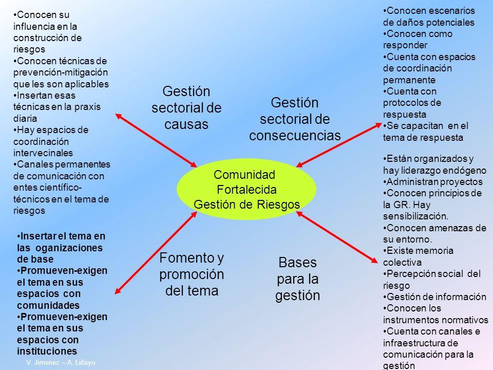 Comunidad Fortalecida Gestión de Riesgos Gestión sectorial de causas Gestión sectorial de consecuencias Fomento y promoción del tema Bases para la ges