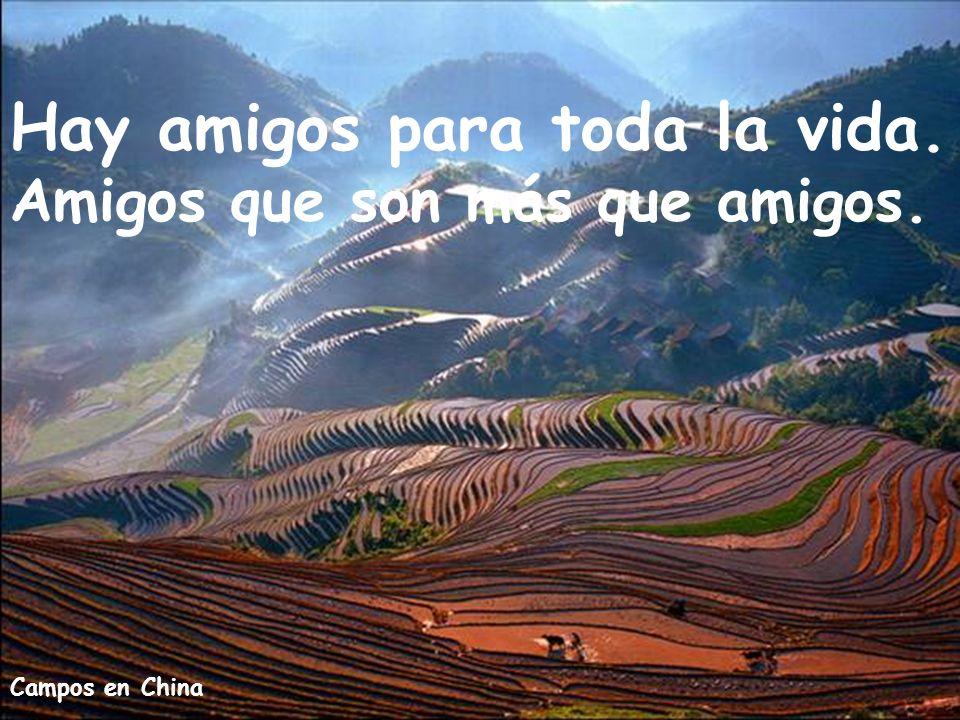 Arco Iris en Iguazú Ah se me olvidaba decirte: que también hay amigos como TU, que te llevo siempre en mi corazón.