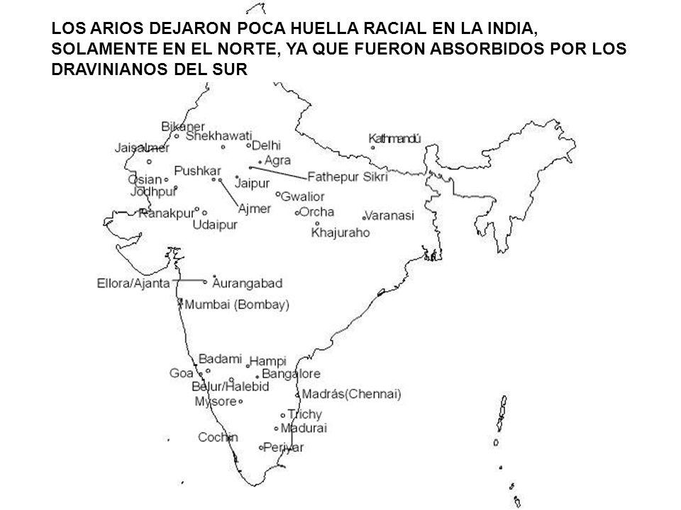 LOS ARIOS DEJARON POCA HUELLA RACIAL EN LA INDIA, SOLAMENTE EN EL NORTE, YA QUE FUERON ABSORBIDOS POR LOS DRAVINIANOS DEL SUR