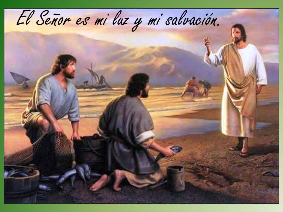 Que tu Luz y tu Salvación, que cada semana recibo de un modo especial en la Eucaristía dominical, me ayuden a confiar más en Ti.