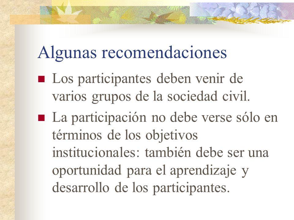 Algunas recomendaciones Los participantes deben venir de varios grupos de la sociedad civil. La participación no debe verse sólo en términos de los ob