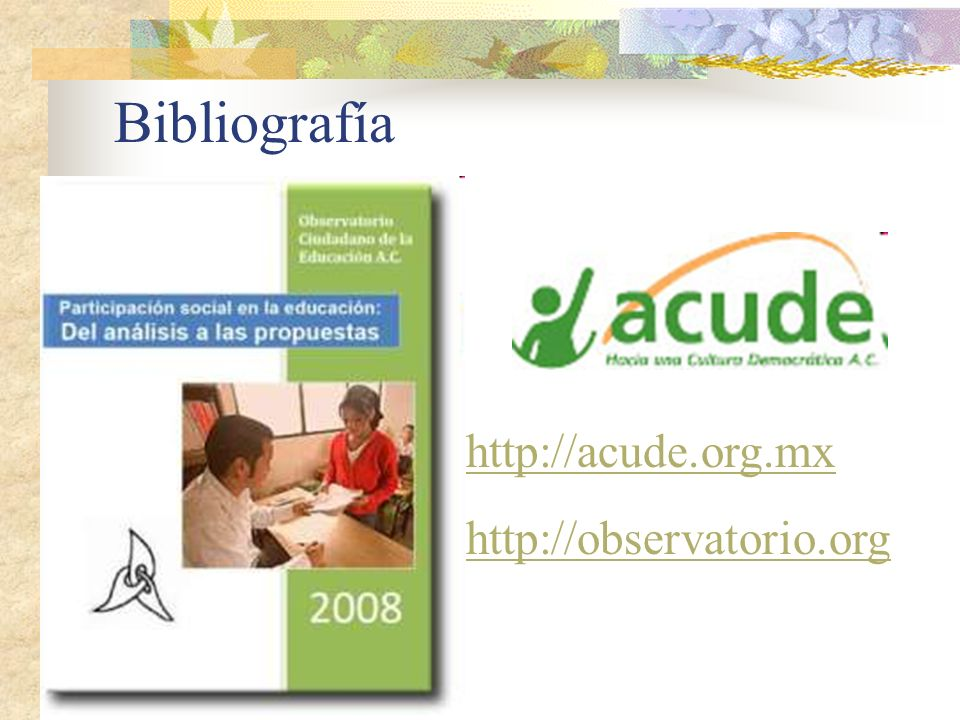 http://acude.org.mx http://observatorio.org